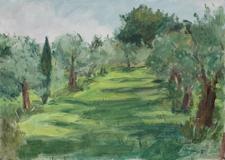 Olive grove San Casciano. 25x 35 cm. Oil on Board.