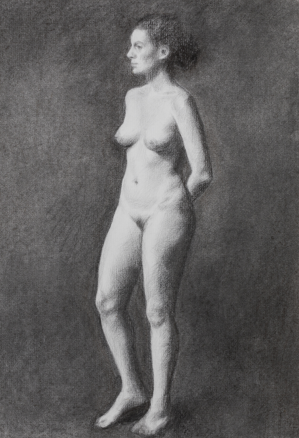 Standing charcoal nude